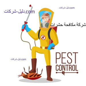 افضل شركة مكافحة حشرات ببيش