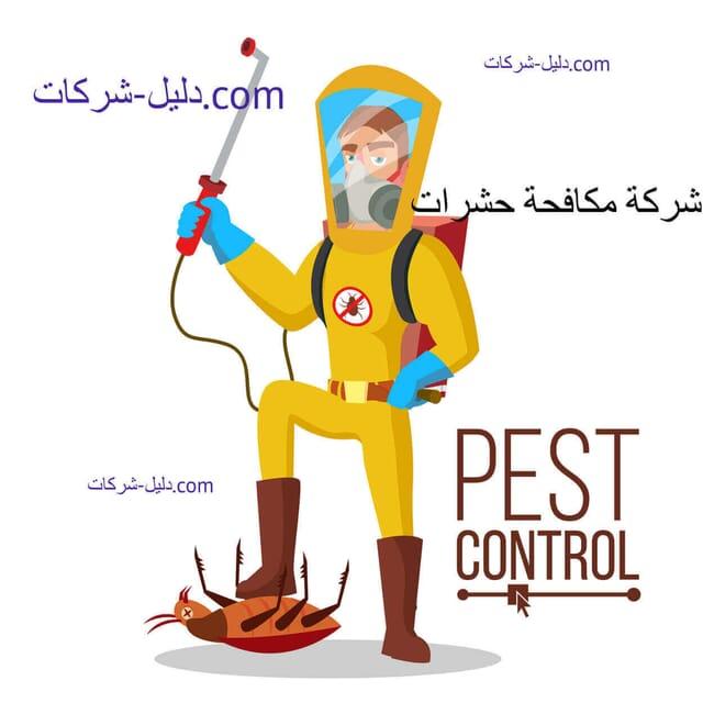 افضل شركة مكافحة حشرات بجازان دليل ارخص شركات لمكافحة وابادة الحشرات بجازان
