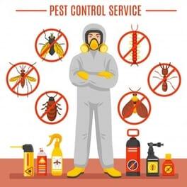 افضل شركة مكافحة حشرات بضرما دليل ارخص شركات مكافحة وقتل الحشرات بضرما